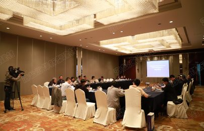 """Review Meeting on """"Application Research Report of High Strength Plastic Steel Interlocking Composite Sheet Pile Ecological Revetment in Waterway Engineering"""